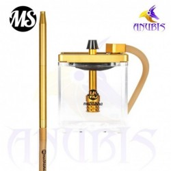 MS Micro Gold Clear